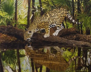 JaguarReflectionsII